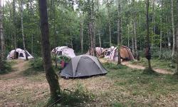 Sommerlager Wermsdorfer Wald Freilichtmueseum